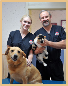 Pet Wellness Services in Chillicothe OH